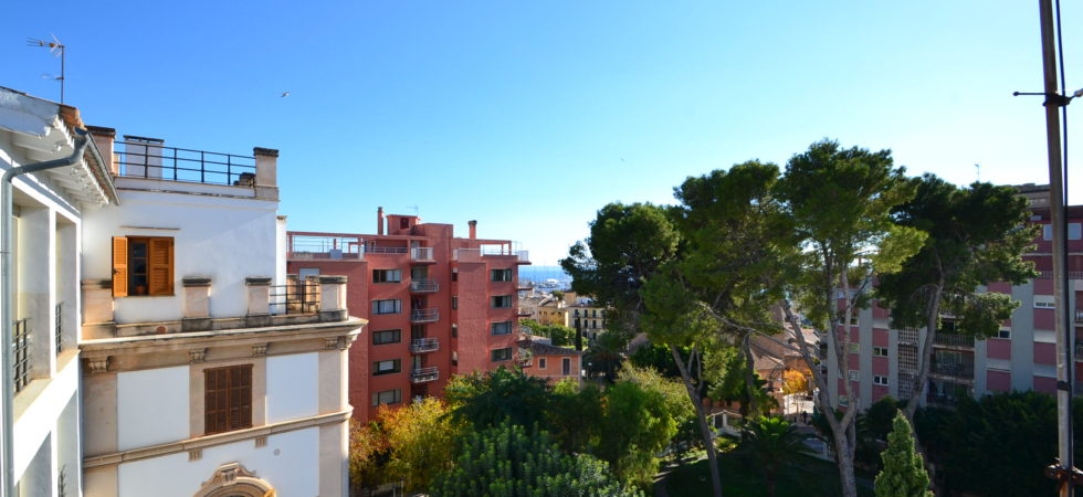 Apartment in Santa Catalina Palma – Price Reduced!