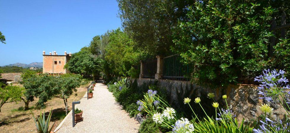 Luxury 8 Bedroom Boutique Hotel for Sale in Calvia Mallorca – Leasehold (Traspaso)